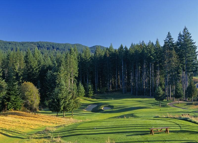 Washington Golf Courses - Gold Mountain Golf Club, Bremerton, WA