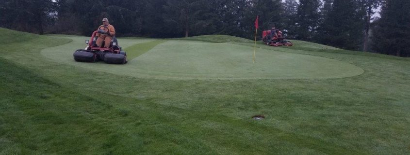 How Did the Courses Handle the Weather? - Gold Mountain Golf Club